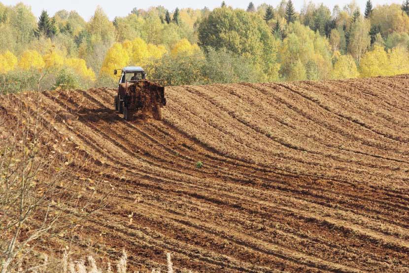 """Крылов: """"Я вообще считаю, что у сельского хозяйства две беды. Первая - иностранные продукты, субсидируемые правительствами этих стран. И вторая - законы, которые позволяют иностранным продуктам приходить на наш рынок"""""""