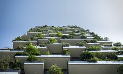 Зеленое строительство, экология